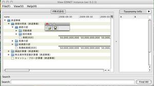 20090505edinetinstance02